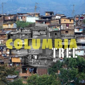 Tree- Columbia (TheTreeMix)